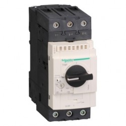 TeSys GV3-Circuit breaker-thermal-magnetic - 37…50A - EverLink BTR connectors